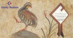 müze-örenyeri-tabela-yönlendirme-barisol tabela-teşhir tanzim-koklu reklam-1